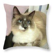 Blue-eyed Boy Throw Pillow