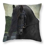 Remme Throw Pillow