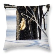 Remnant Seed Pod Throw Pillow