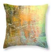 Removing All Illusions Throw Pillow