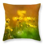 Renacemos Throw Pillow