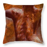 Renaissance IIi Throw Pillow