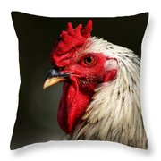 Renegade Rooster Throw Pillow