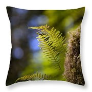 Renewal Ferns Throw Pillow by Mike Reid