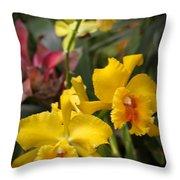 Reptile Gardens IIi  Throw Pillow