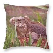 Reptile Land  Throw Pillow