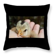 Rescue And Survival Throw Pillow