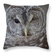 Rescue Owl Throw Pillow