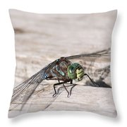 Rescued Dragonfly Throw Pillow