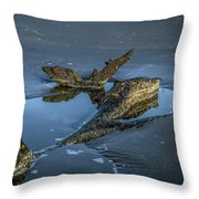 Resemblance Throw Pillow