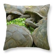 Reservations For Five Throw Pillow