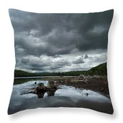 Reservoir Logs Throw Pillow
