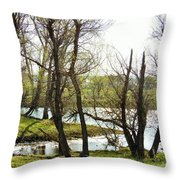 Resevoir In The Calf Pasture Throw Pillow