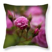 Resplendent Roses Throw Pillow