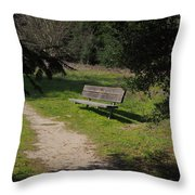 Rest Along The Path Throw Pillow
