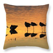 Rest At The End Of A Day Throw Pillow