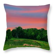 Restful Afternoon Throw Pillow