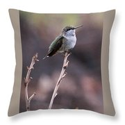 Restful Pose Throw Pillow