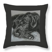Restful Thoughts Throw Pillow