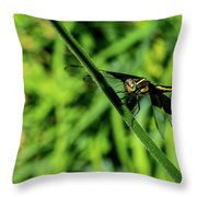 Resting Alert Dragonfly Throw Pillow