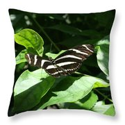Resting - Black And White Butterfly Throw Pillow