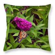 Resting Butterfly 1 Throw Pillow