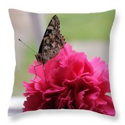 Resting Butterfly Throw Pillow by Myrna Migala
