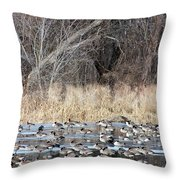 Resting Canadian Geese Throw Pillow