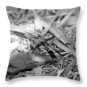 Resting Dragonfly Throw Pillow
