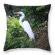 Resting Egret Throw Pillow