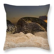 Resting Green Sea Turtle Throw Pillow