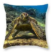 Resting Honu Throw Pillow