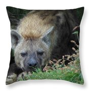 Resting Hyena Throw Pillow