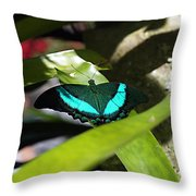 Resting In The Shadows Throw Pillow