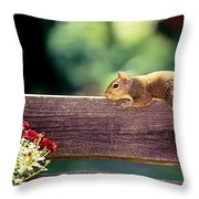 Resting In The Sun Throw Pillow