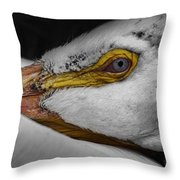 Resting Throw Pillow by Jeff Swanson