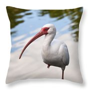 Resting On One Leg Throw Pillow