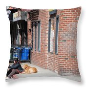 Resting On The Corner Throw Pillow