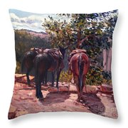 Resting On The Kaibab Trail Throw Pillow