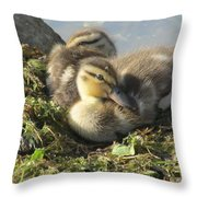Resting On The Lake Shore. Throw Pillow