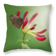 Resting On The Pink Plant Throw Pillow