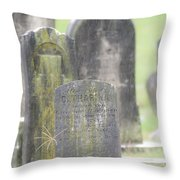 Resting Place In The Rain Throw Pillow