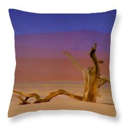 Resting Place Of A Dead Tree Throw Pillow