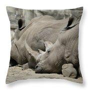 Resting Rhinos Throw Pillow