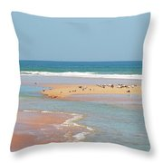 Resting Seagulls On A Sandbar Throw Pillow