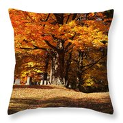 Resting Under Maples Throw Pillow