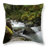 Resting Within The Song Of Water Throw Pillow