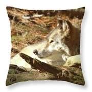 Resting Wolf Throw Pillow