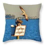 Resume Normal Safe Operation Throw Pillow