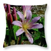 Resurrection Flower Throw Pillow
